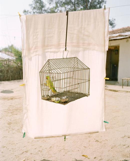 , 'Lovebird,' 2016, Foam Fotografiemuseum Amsterdam