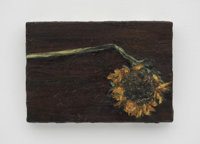 , 'Girassol [Sunflower],' 2016, Casa Triângulo