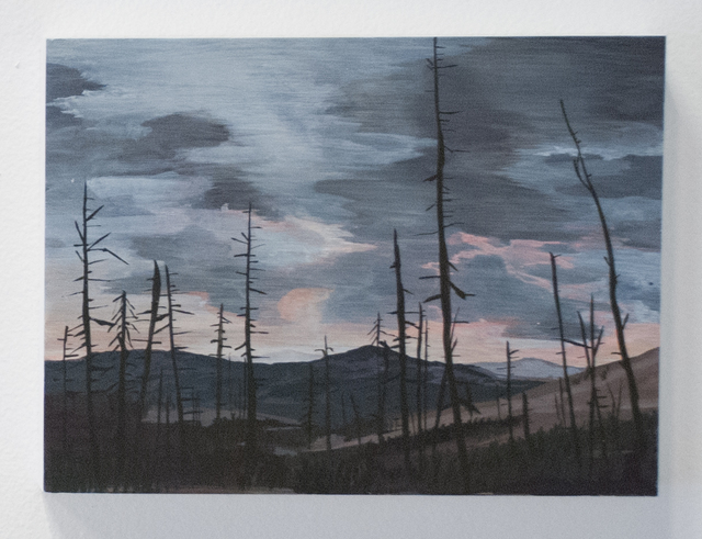 , 'Leaving Mammoth Springs (the scenic route),' 2016, Fort Worth Contemporary Arts