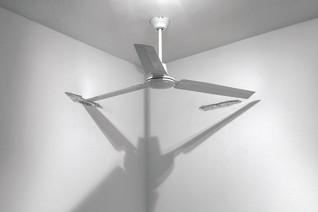 , 'Fan,' 2013, MALBA