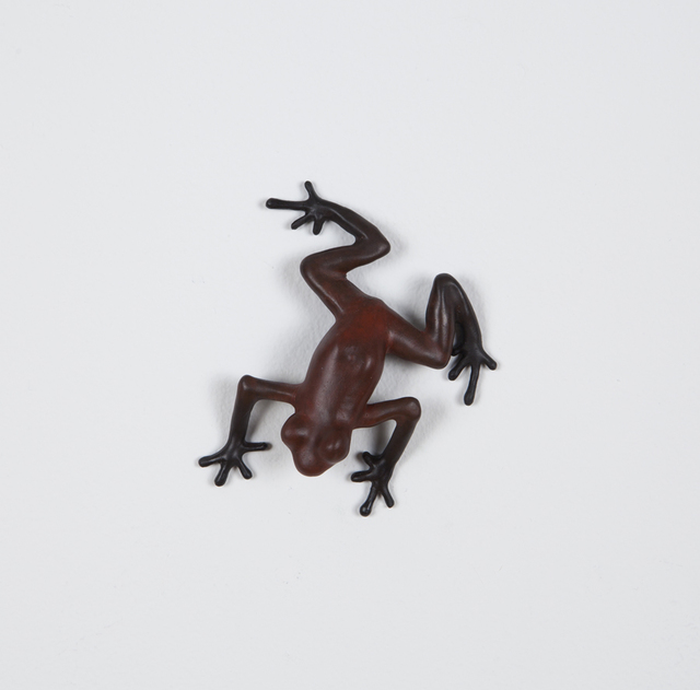 Mark Calderon, 'Scout ', 2015, Nancy Hoffman Gallery