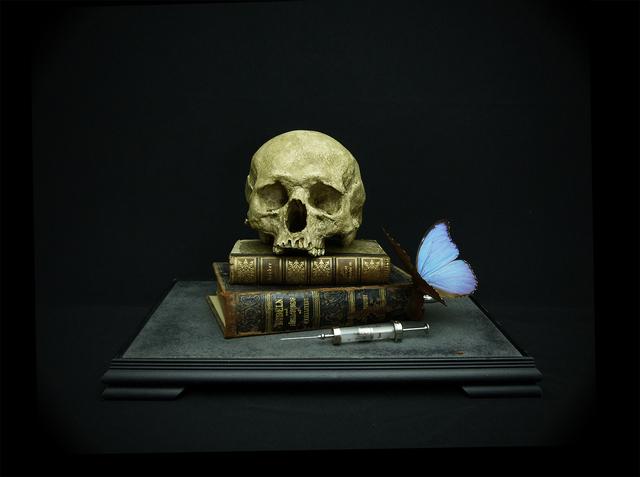 , 'Memento mori with thermostahl and morpho,' 2015, Nanda Hobbs Contemporary