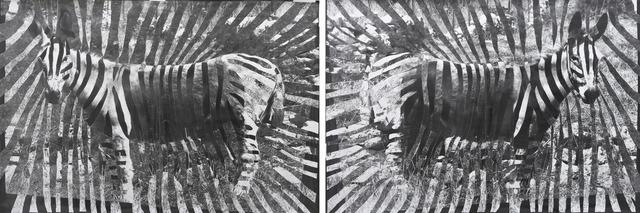 , 'Gaza Zebras,' 2012, Kadel Willborn