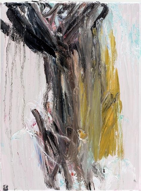 Jan Willem van Welzenis, 'Untitled ', 2016, CO   MO