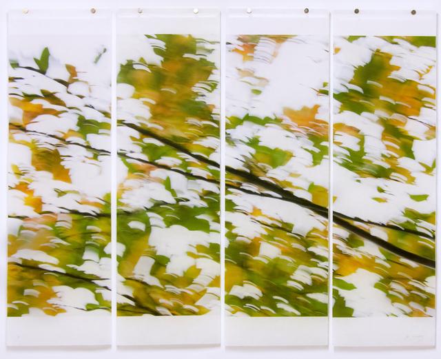 , 'Seeking Solace No. 5,' 2019, Carrie Haddad Gallery