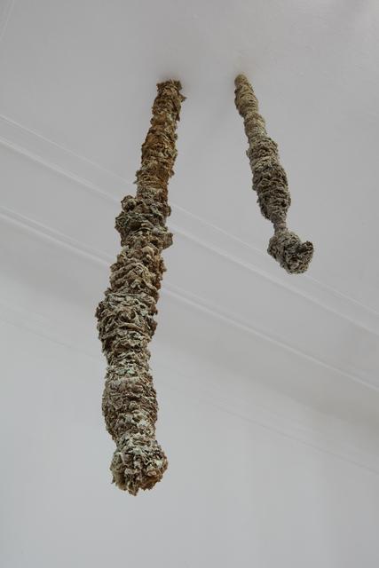 , 'Untitled (Liane-Jardin transformiste),' 2017, aA29 Project Room
