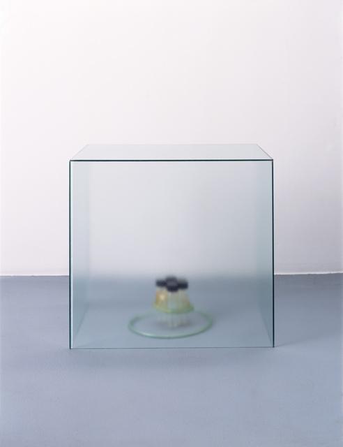 , 'Hiato,' 1990, Annely Juda Fine Art