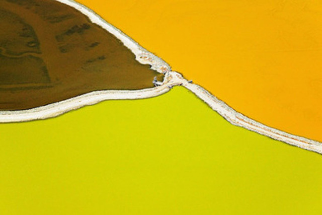 , 'Lime Orange,' , The McLoughlin Gallery