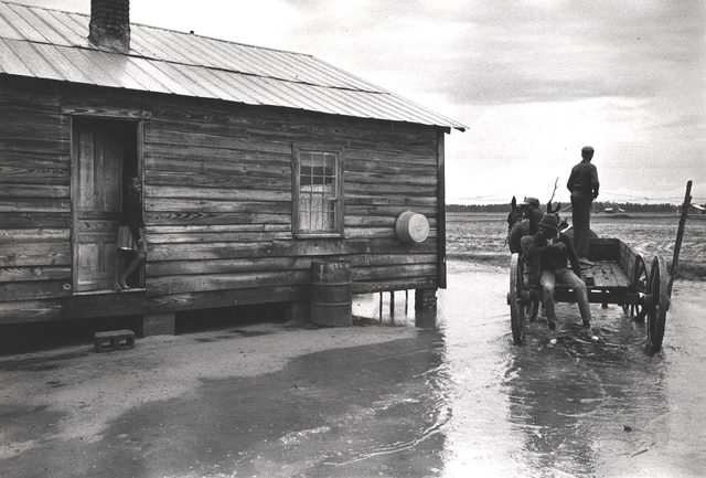 Constantine Manos, 'Untitled, Sharecroppers, South Carolina (puddle, house, horse drawn wagon)', 1965, Photography, Gelatin silver print, Robert Klein Gallery