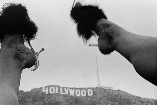 , 'Hollywood Sign,' 1975-2018, Mary Ryan Gallery, Inc