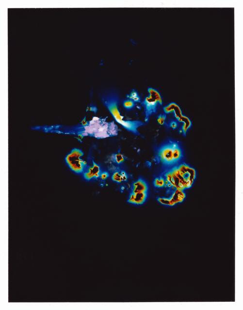 , 'Unseen Potential (Psilocybe Atlantis Sclerotia),' 2015, KÖNIG GALERIE