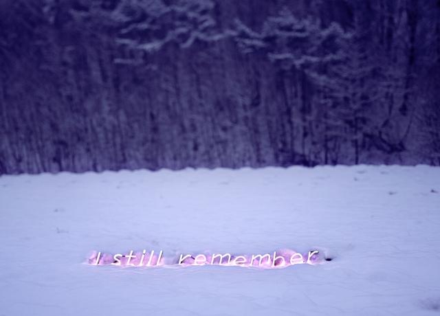 Jung Lee, 'I Still Remember', 2010, Photography, C-type Print, Diasec, CHRISTOPHE GUYE GALERIE