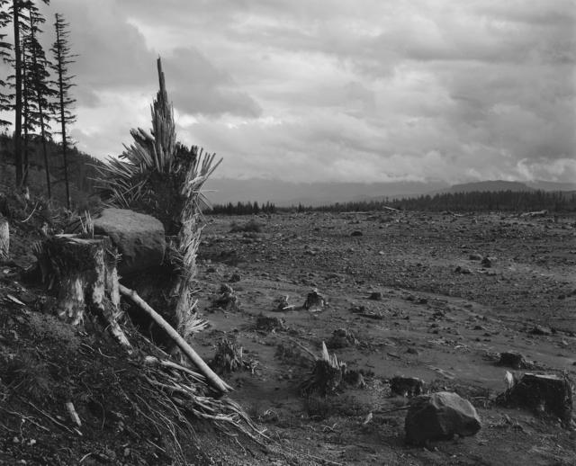 , 'Looking southeast across lahar (mudflow). Six miles southeast of Mount St. Helens,' 1983, Etherton Gallery