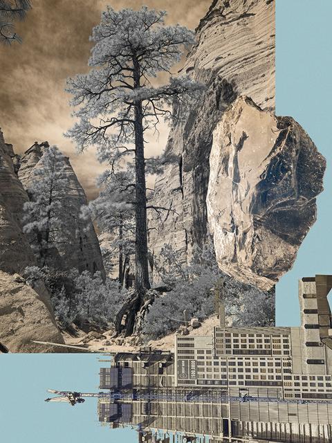 , 'Big Pine,' 2016, Nicole Longnecker Gallery