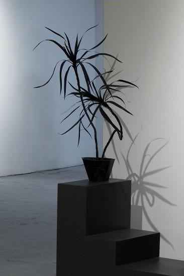 , 'Plante #1,' 2016, Art Mûr