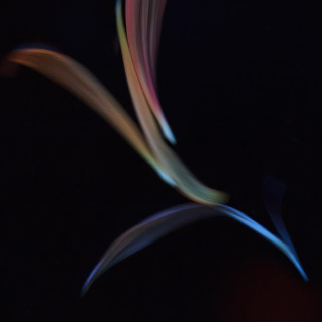 , 'Adagio 2,' 2014, 555 Gallery