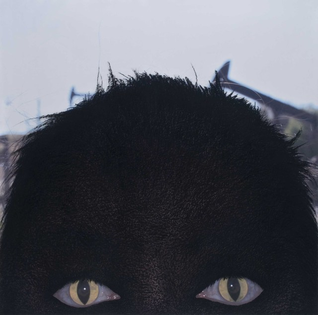 , 'Malocchio 6,' 2011, Galleria il Ponte