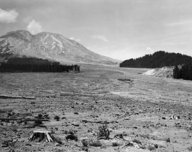 , 'Looking NW across lahar toward Mt. St. Helens- 6 miles Se of Mt. St. Helens, Wash.,' 1984, Etherton Gallery