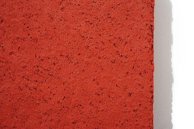 , 'Concretion 1:5.6 (coral) - Detail,' 2007, Charles Nodrum Gallery