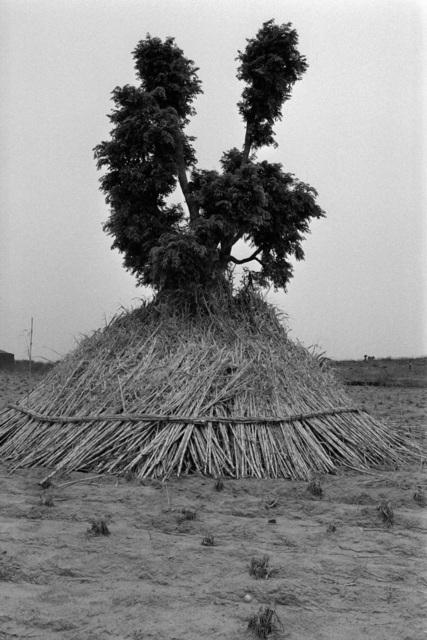 , 'Nord du Nigeria, Haoussa,' 1989/1990, Galerie Maeght