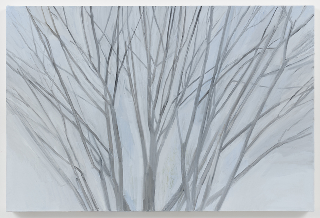 Sylvia Plimack Mangold, 'Winter Maple 2016', 2016, Alexander and Bonin