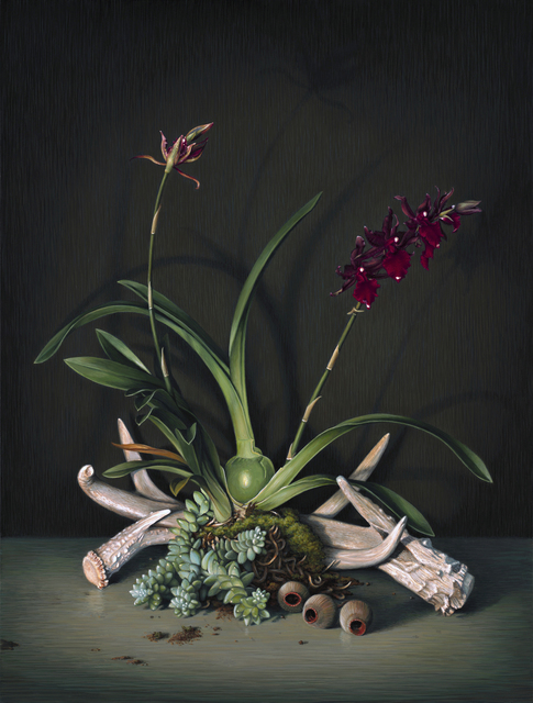 , 'Orchids and Antlers,' 2014, Sullivan Goss