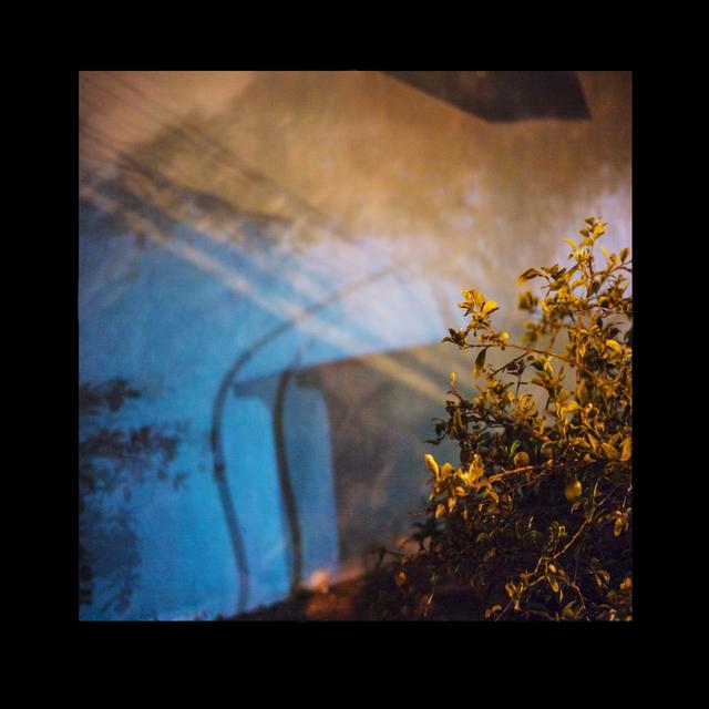 , 'Bush, Blue Wall,' 2013, Addison/Ripley Fine Art