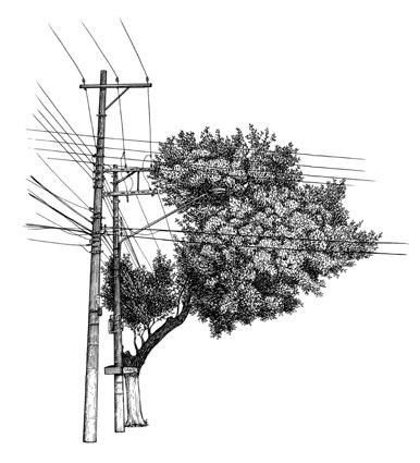 , 'Árvore nº 7,' , Galeria Virgilio