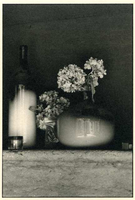 , 'Still Life with Dead Flowers,' , Soho Photo Gallery