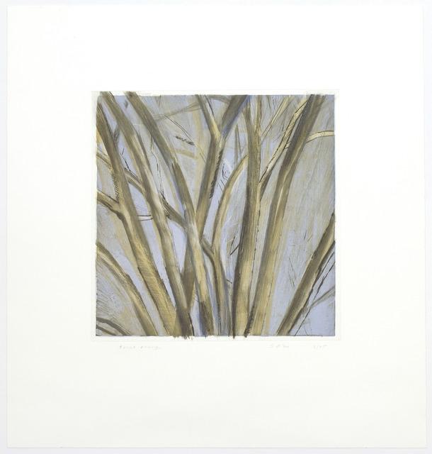 , 'Winter Elm,' 1995, Senior & Shopmaker Gallery