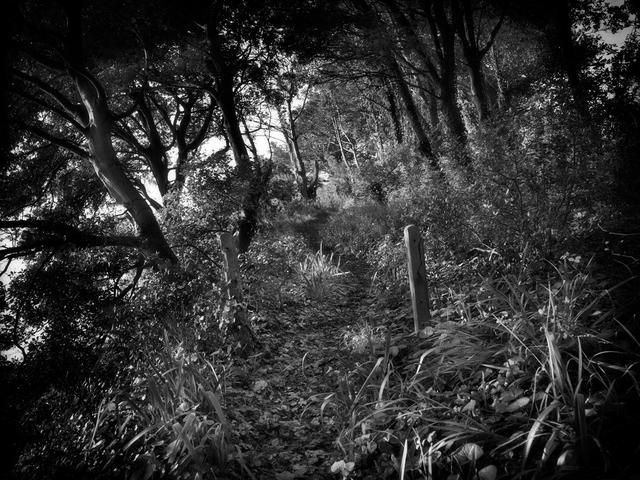 Jon Wyatt, 'Cliff footpath, South Wales', 2011, Circuit Gallery