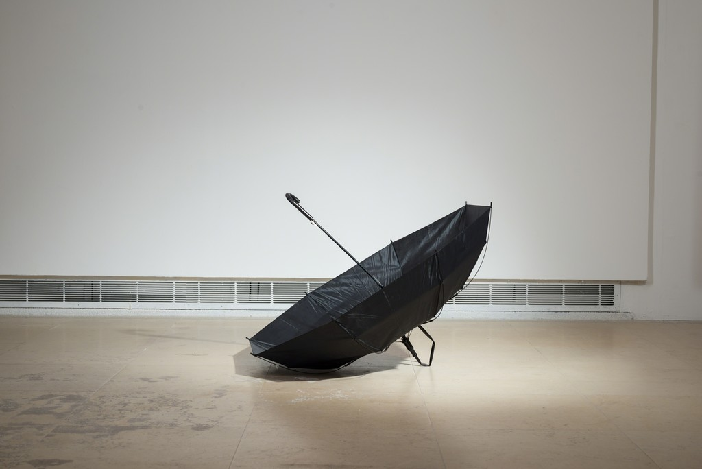 Ariel Schlesinger, Untitled (Inside Out Umbrella), Hiding Wood in Trees, 2014, CCA. Photo by Youval Hai.