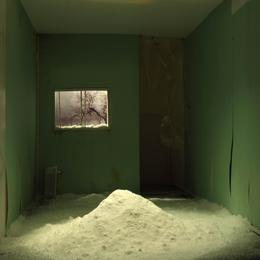 , 'Lie Room 1,' 2014, Galeria Filomena Soares