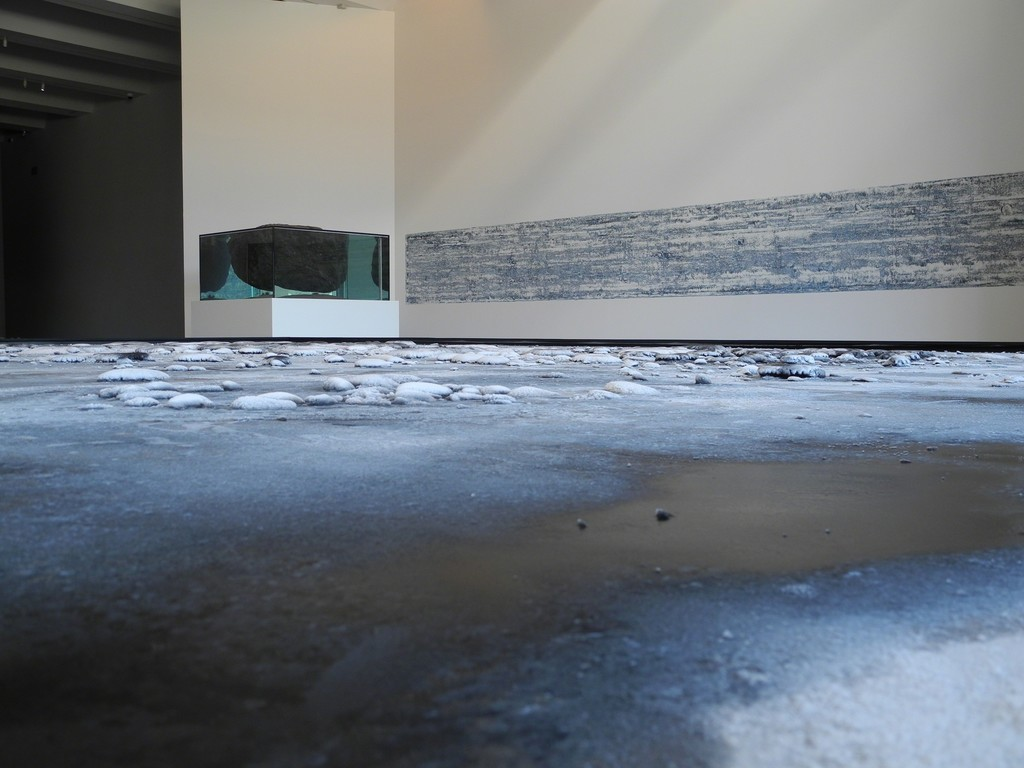 Pierre Huyghe at LACMA, 2015, Photo by Leonor Rey