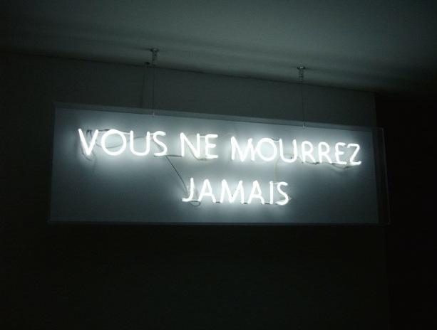, 'Vous ne mourrez jamais,' 2010, Odile Ouizeman