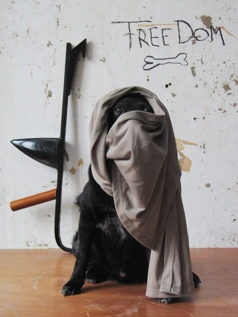 , 'El Ern,' 2011, Hopstreet