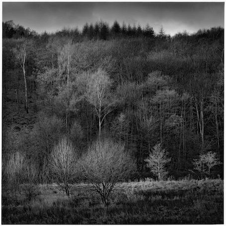 Paul Hart, 'Border', 2005, The Photographers' Gallery | Print Sales