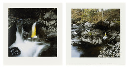 , 'Elm Leaves / Held Together with Water to Rock / Behind a Small Waterfall / Glen Marlin Falls, Dumfriesshire / 19 October, 2007,' 2007, Galerie Lelong & Co.