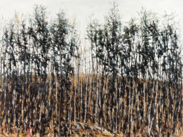 Dolores Justus, 'Tree Line II', 2019, Justus Fine Art Gallery
