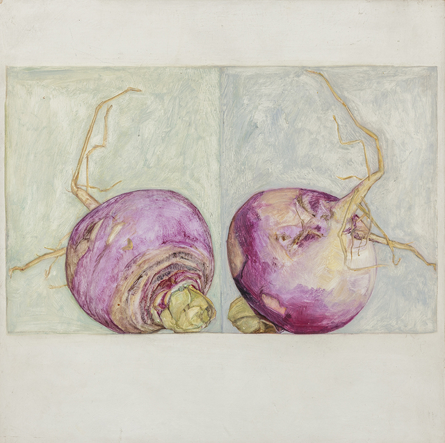 , 'Ledger: Turnip,' 1996-1997, A.I.R. Gallery