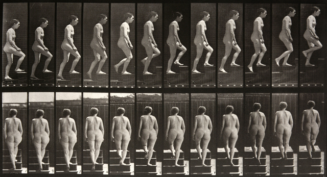 , 'Animal Locomotion: Plate 92 (Nude Woman Ascending Staircase),' 1887, Beetles + Huxley