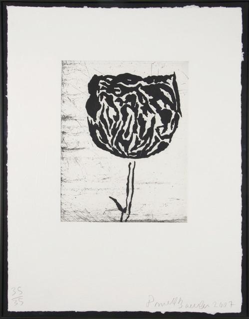 Donald Baechler, 'Flower IV', 2007, Zane Bennett Contemporary Art