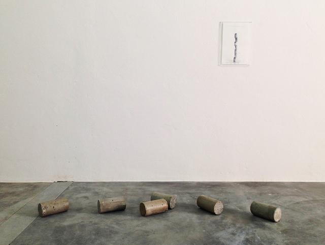 , 'Corpo de prova,' 2016, Galeria Jaqueline Martins