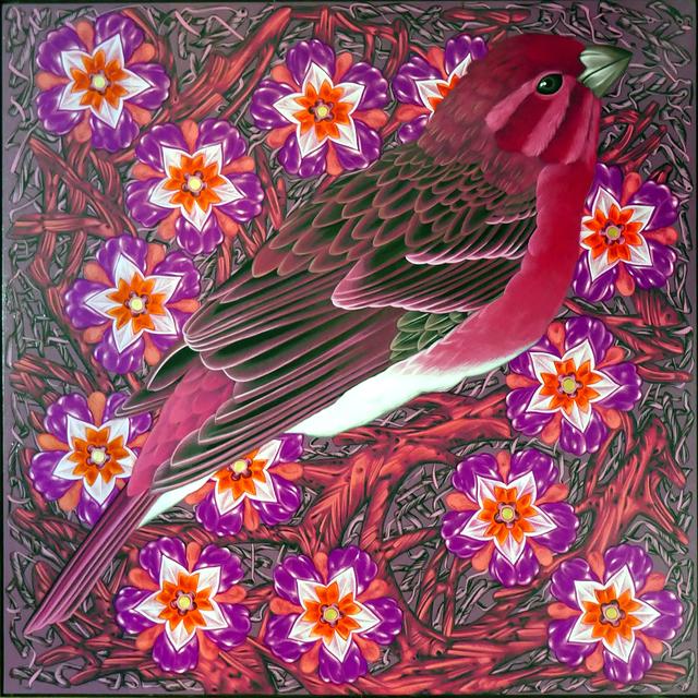 Kevin Veara, 'Exult #48 Purple Finch', 2019, Springfield Art Association
