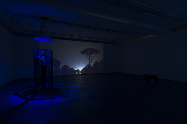 , 'Exhibition view Wentrup,' 2015, Wentrup