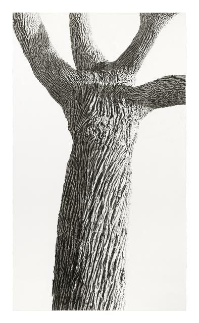Sandra Allen, 'Qi', 2016, DANESE/COREY