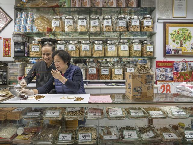 , 'HONG KONG SHOP CATS #17,' 2015, Blue Lotus Gallery