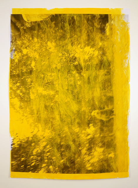 , 'Impermanences, Dogs of London (Golden Yellow),' 2015, Minus Space