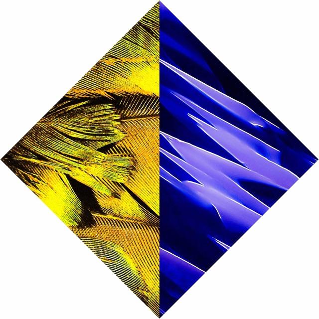 , 'FeatherWaves,' 2016, Galerie Ron Mandos