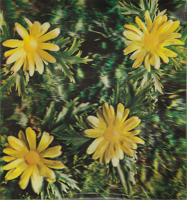 Andy Warhol, 'Rain and Flowers (Detail of construction)', 1970, Phillips